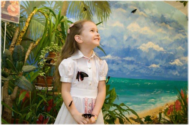 музей бабочек в анапе фото