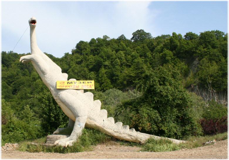 джубга музей причуды леса