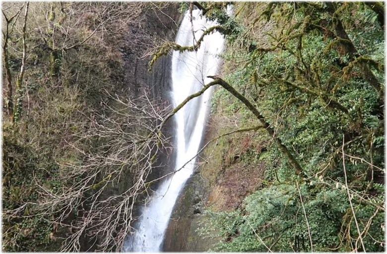 вид на водопад Ореховый со ступенек