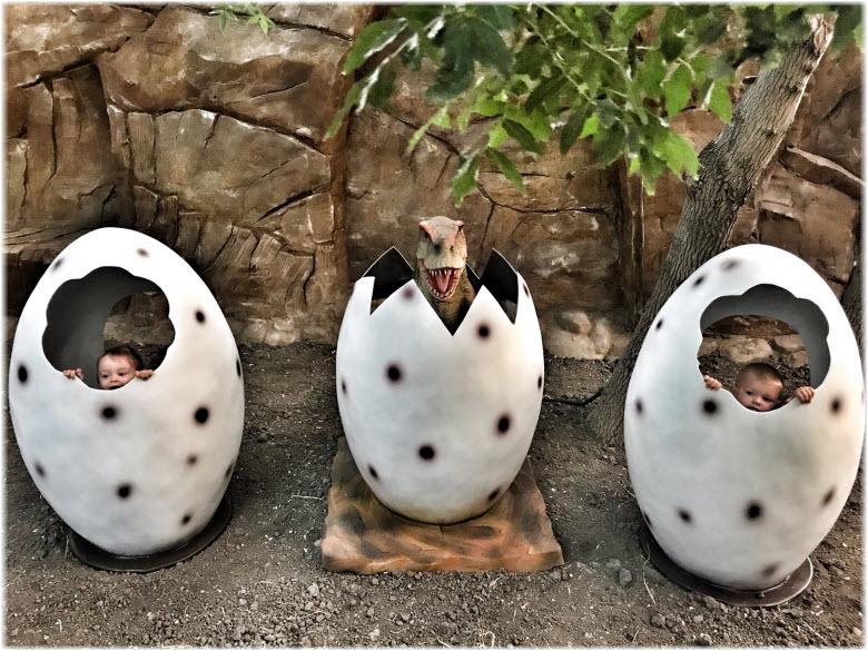 яйца динозавров к динопарке