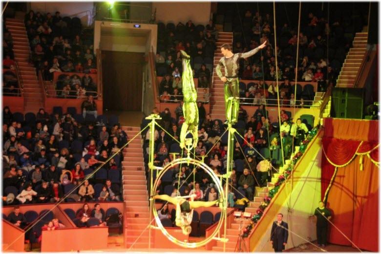 фото внутри цирка Сочи