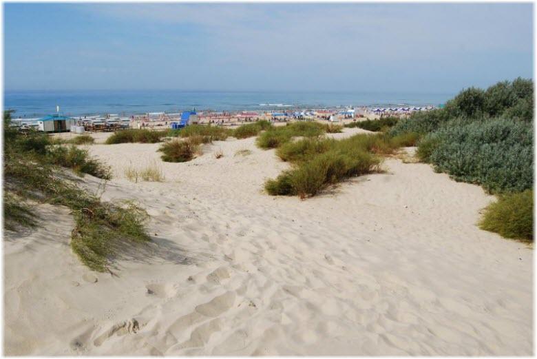 пляж Весна-Рябинушка-Соловей