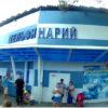 Дельфинарий в Кабардинке