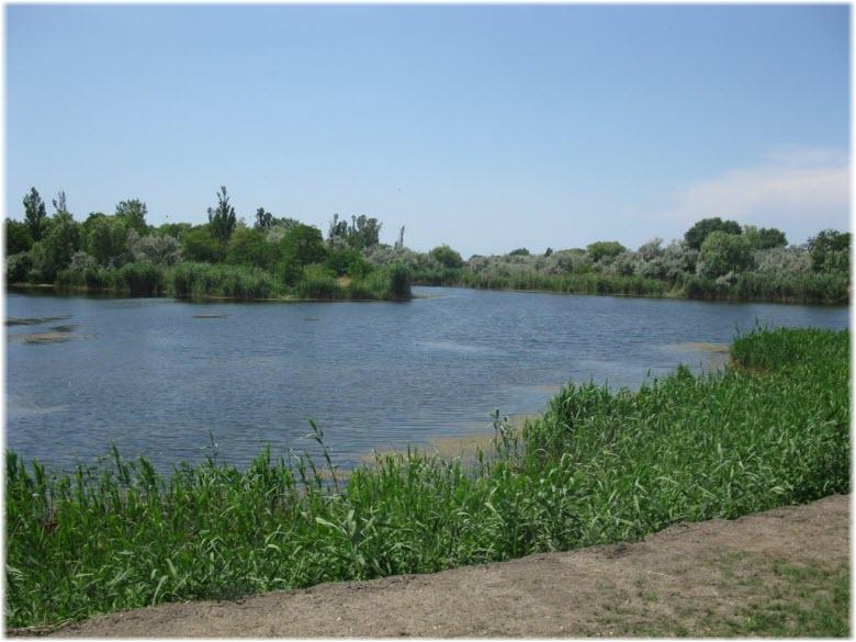 плавни реки Анапка