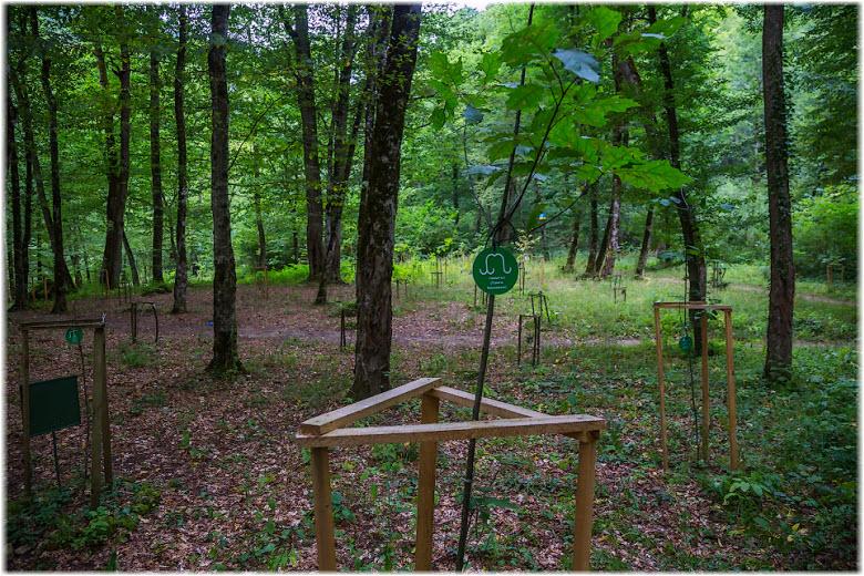 Адыгейский родовой лес