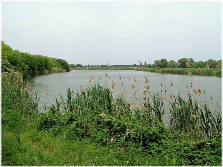 Река Кирпили в Краснодарском крае: отдых и рыбалка, истоки и устье