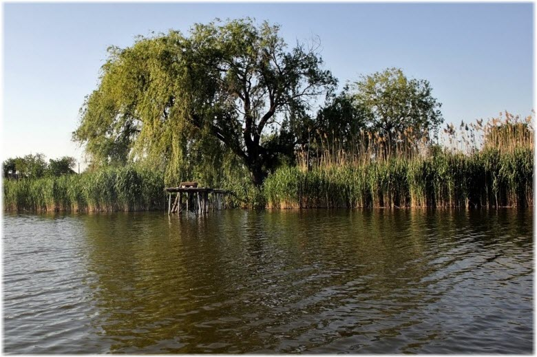 рыбалка на горных речках хабаровского края