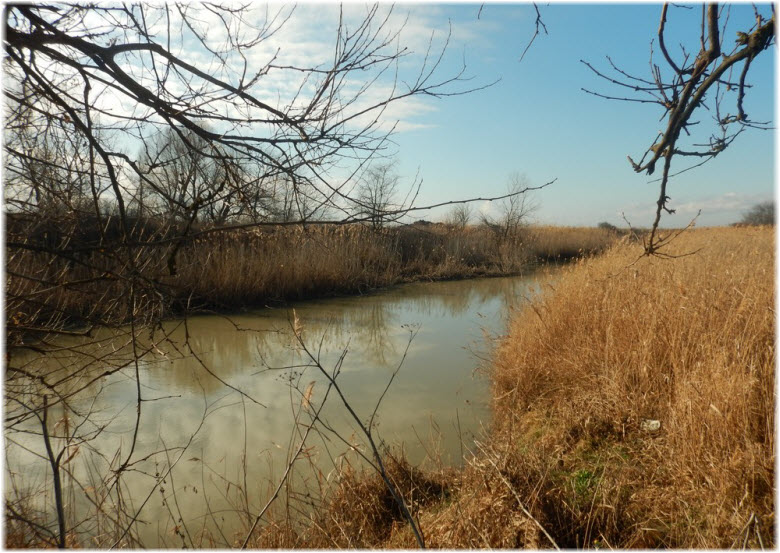 Река Сухой Аушедз