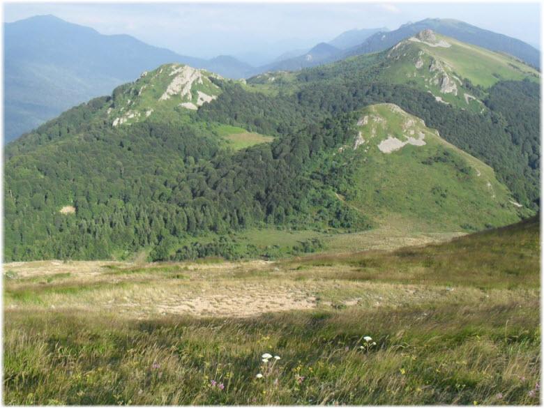 Альпийские луга на горе