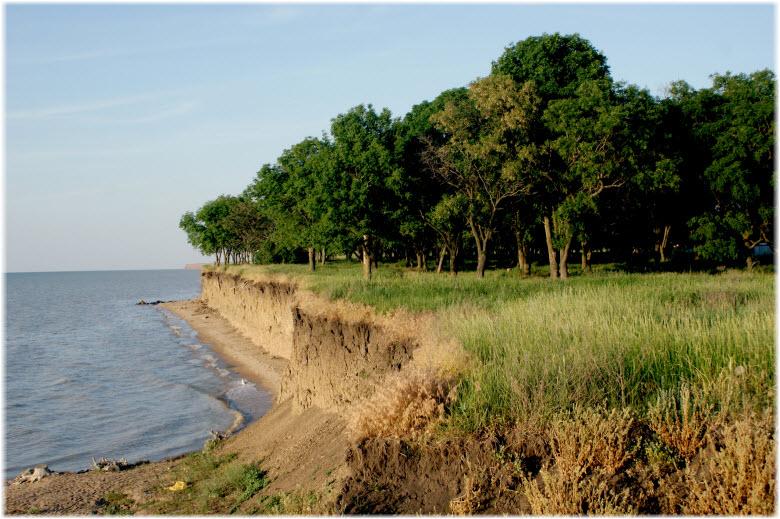 фото природы у пляжа