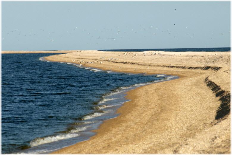 пляжи косы Долгая