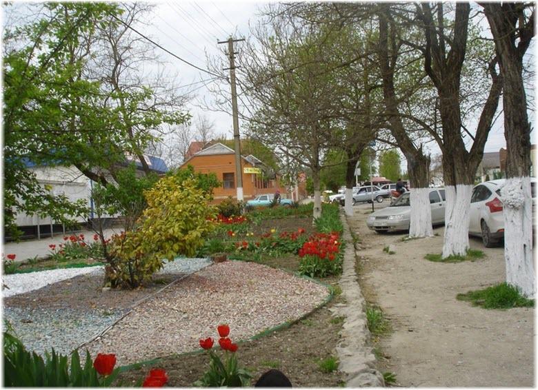 улицы в станице Раевская