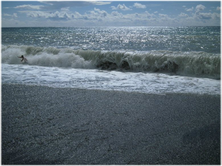 пляж у дельфинария