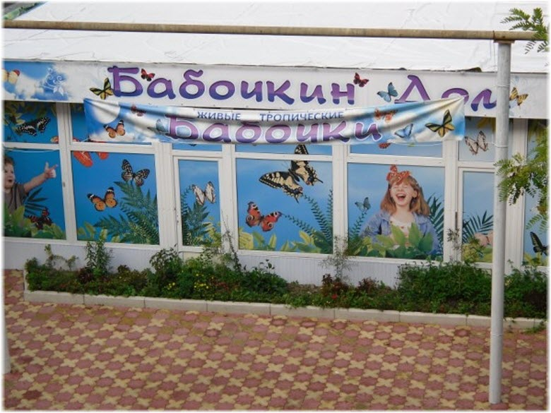 Бабочкин дом