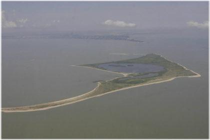 Птичий остров в Ейск