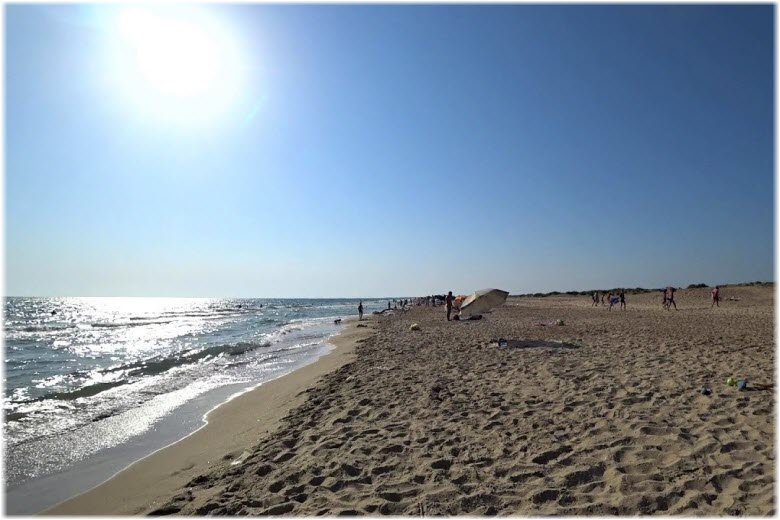 дикий пляж Витязево