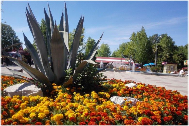 Парк культуры и отдыха в Адлере
