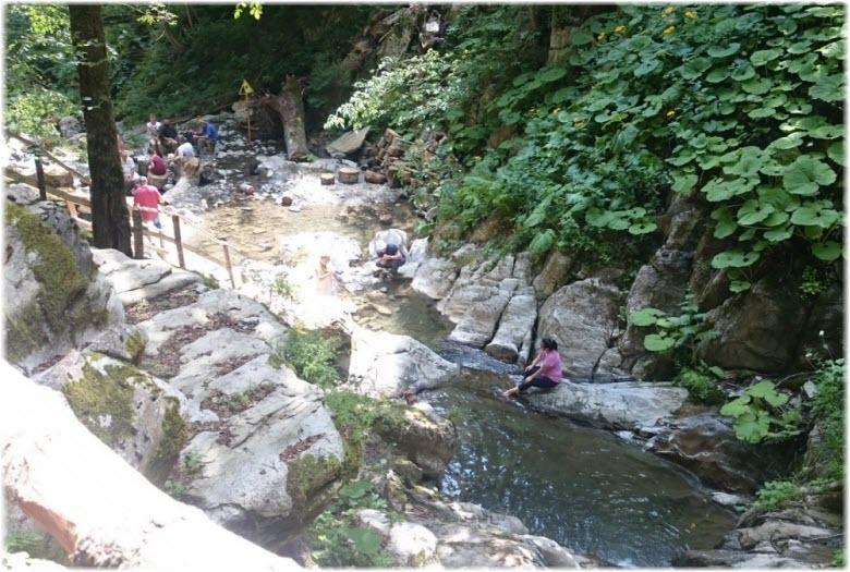 река Менделиха
