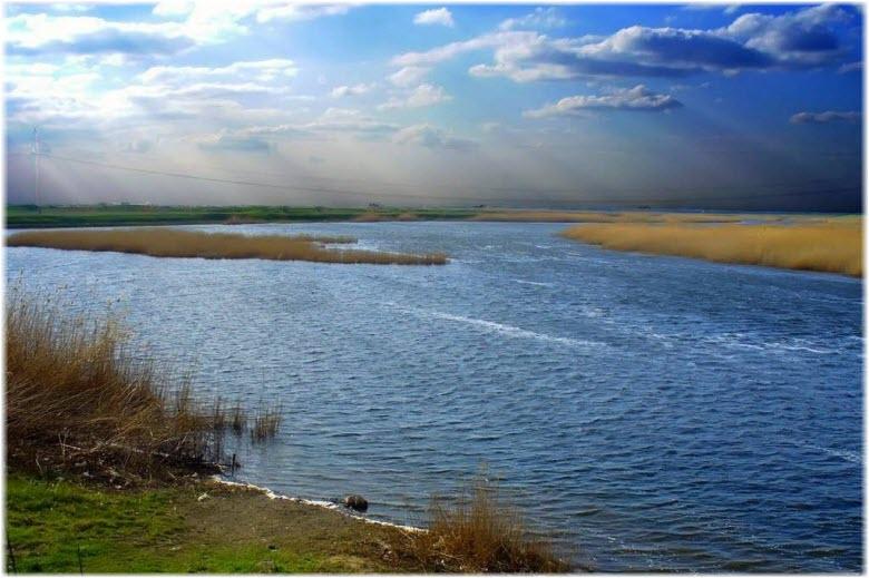 Река Ея в Краснодарском крае
