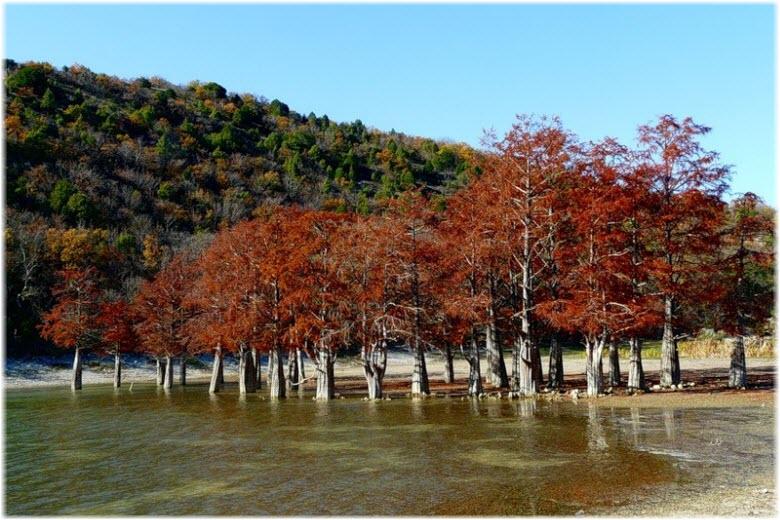 кипарисовое озеро сукко