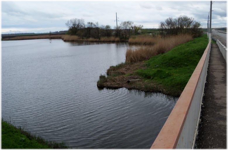 фото течения Бейсуга