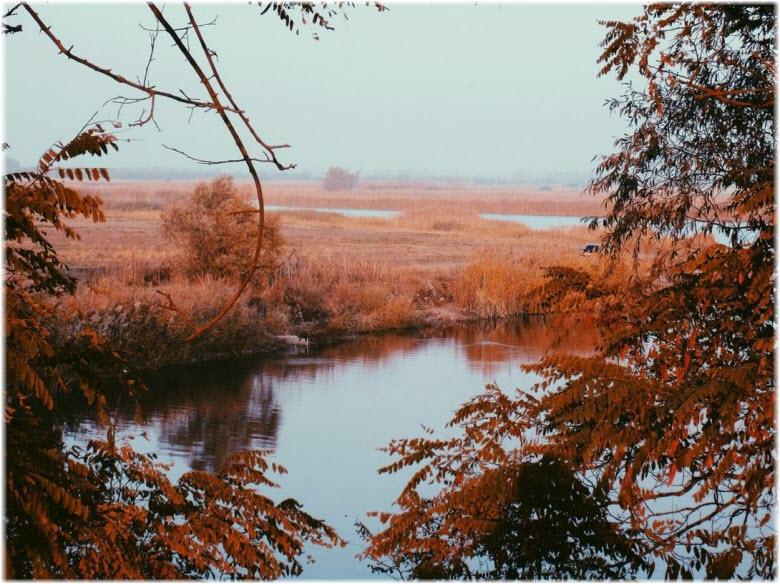 река Бейсуг и Боюховецкой