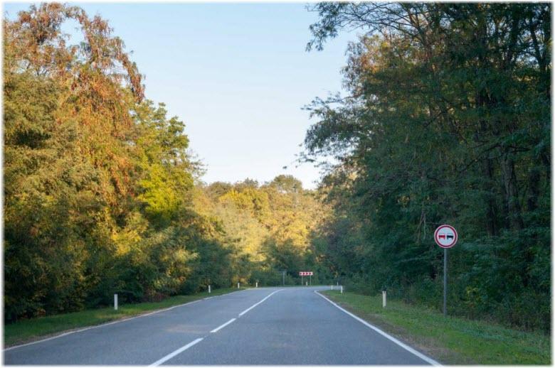 трасса вдоль Челбасского леса