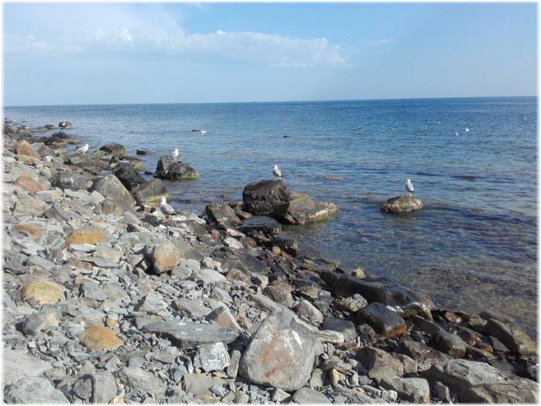 дикий пляж Диана