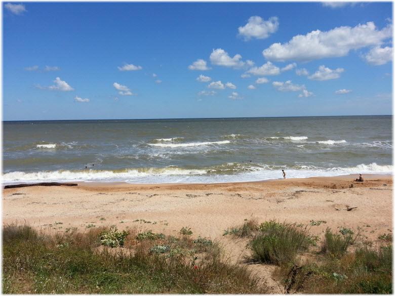 Дикий пляж в Темрюке