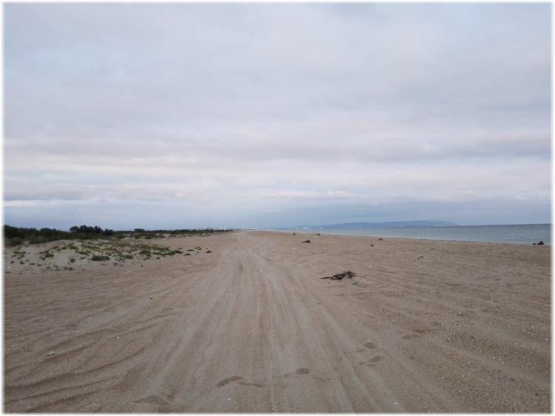 Нудистский пляж в Благовещенской
