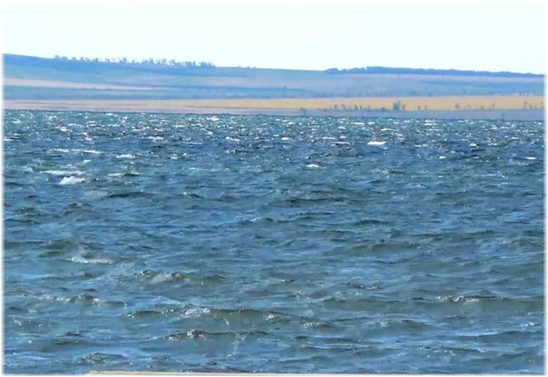 Таманский залив у п. Сенной