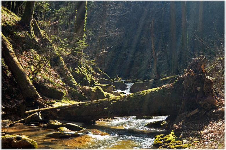 ущелье рядом с водопадом
