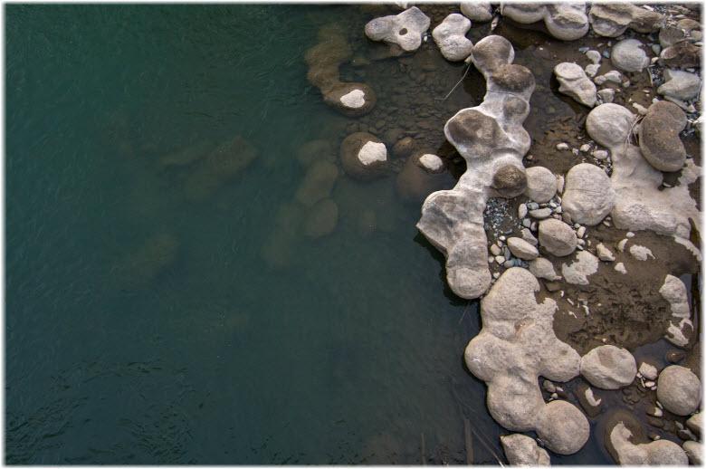 фото окаменелостей