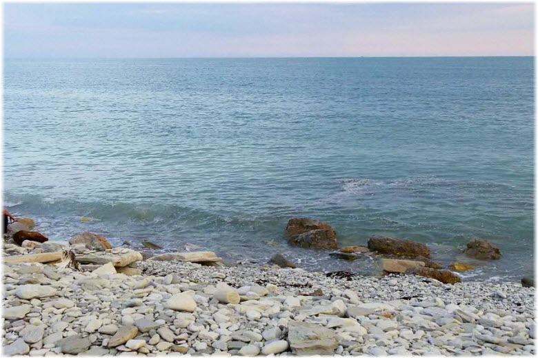 дикий пляж на Тонком мысе