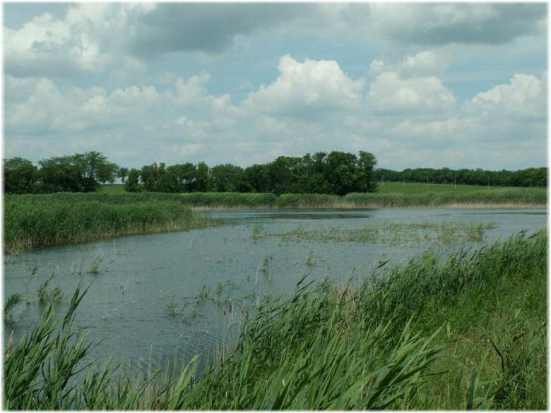 фото течения реки Ея