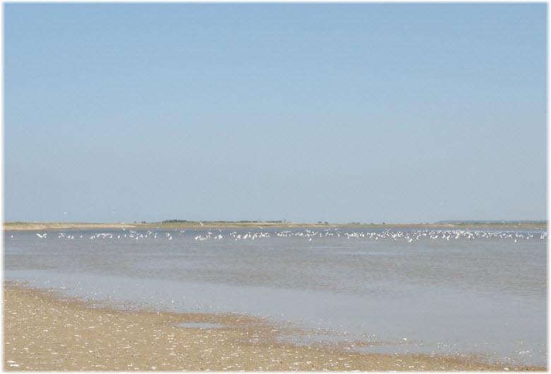 озеро Долгое в Шабельском