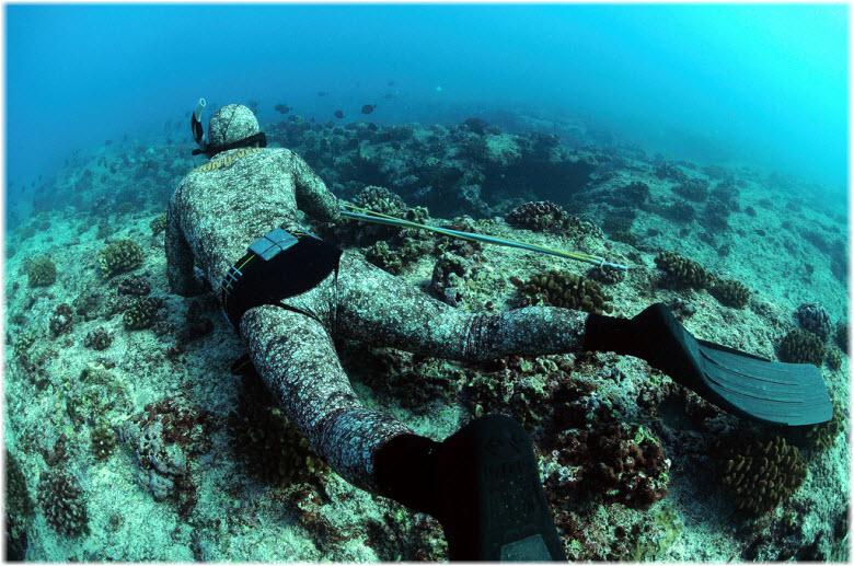 погружения с аквалангом в Сочи