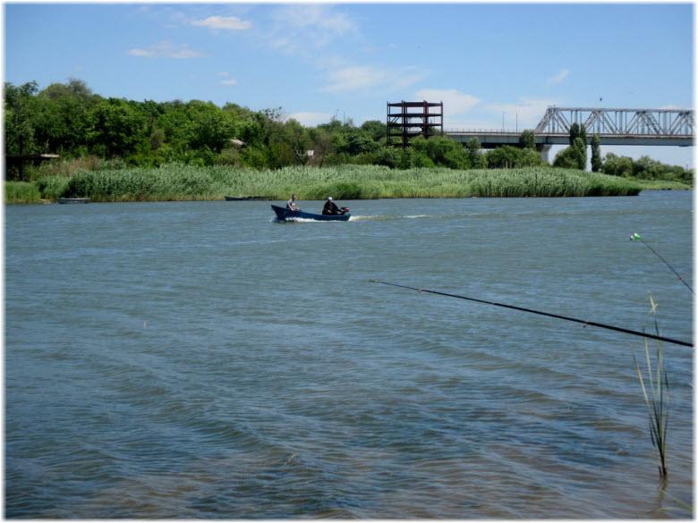 рыбалка на реке Мертвый Донец