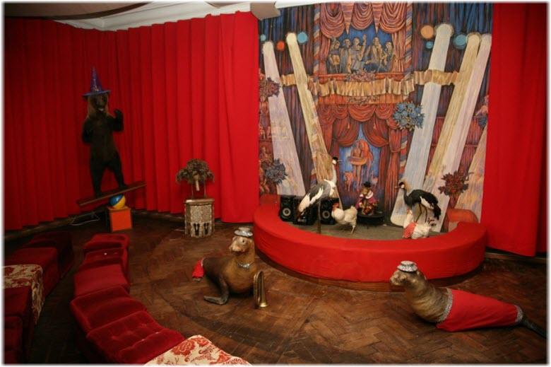 арена в доме Дурова