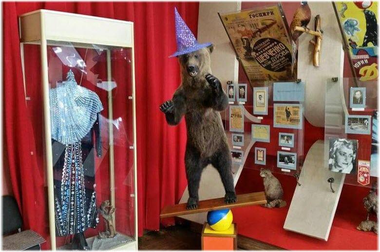 фото внутри дома-музея Дурова