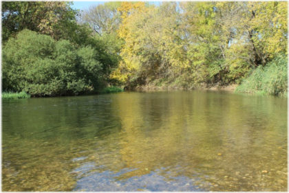 фото реки Миус