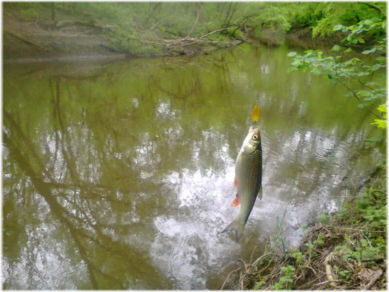 рыбалка на реке Миус