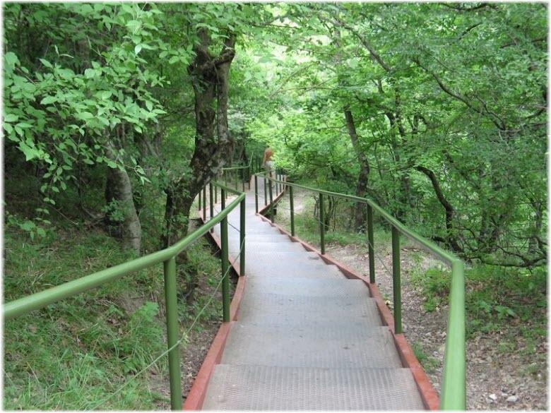 лестница к морю в Кринице