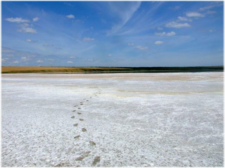 фото Соленого озера