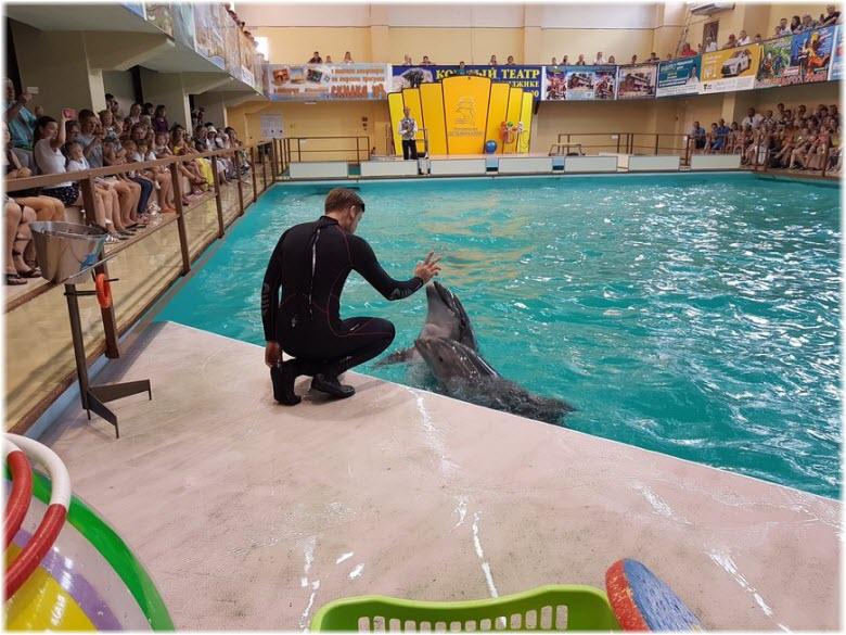 тренеры с дельфинами