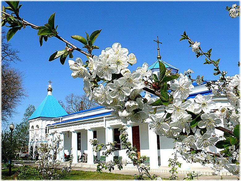 весенние виды церкви Покрова