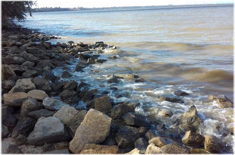 камни на берегу Ейского лимана