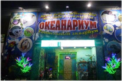 туннельный океанариум в Геленджике