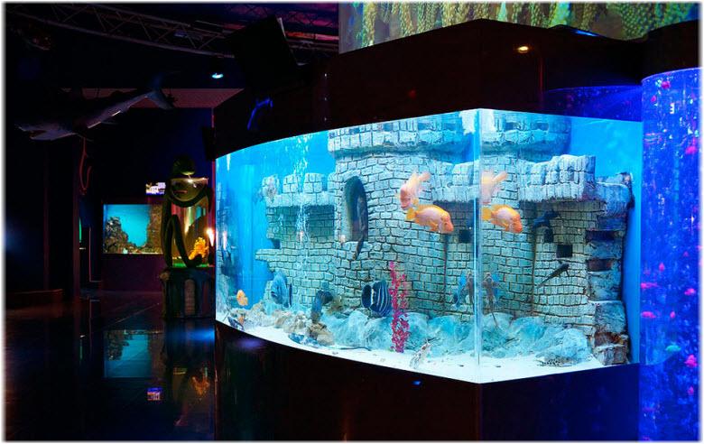 аквариумы в океанариуме