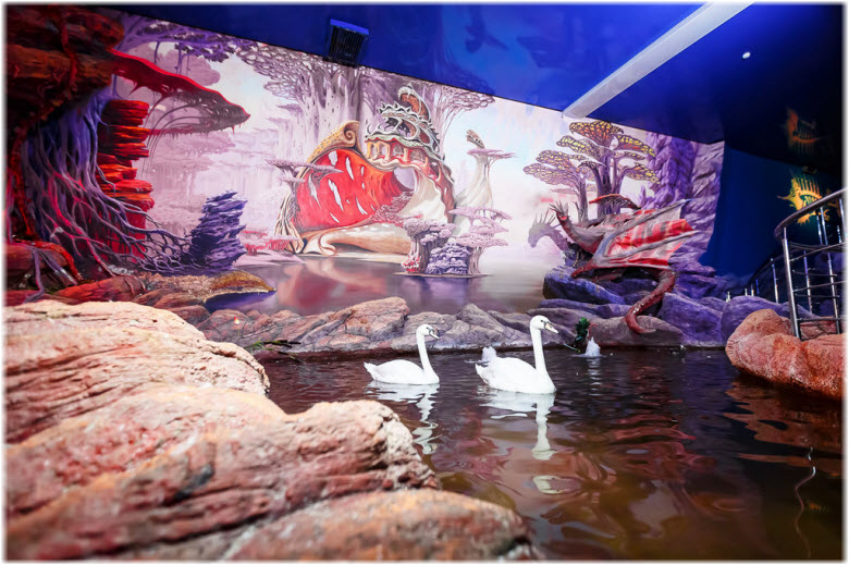 лебеди и утки в океанариуме